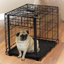 Dog Crate With Up And Away Door