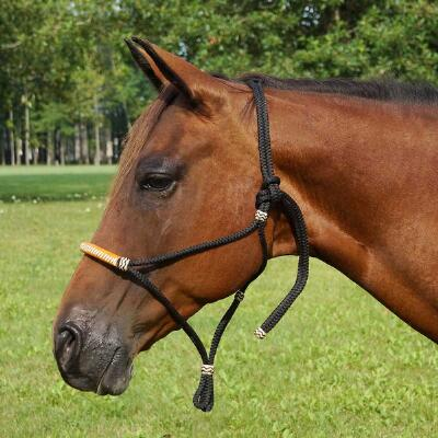 Cord Halter with Leather Wrap Nose band