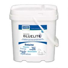 TechMix Equine BlueLite Powder 6 lb - TB