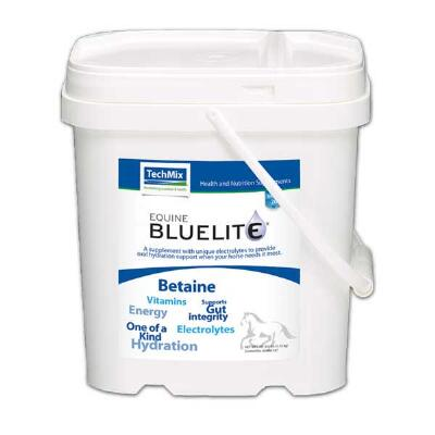 TechMix Equine BlueLite Powder Electrolyte 6 lb