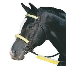 Roma Reflective Bridle Kit - TB