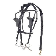 Walsh Kant C Back Bridle with Leather Crown