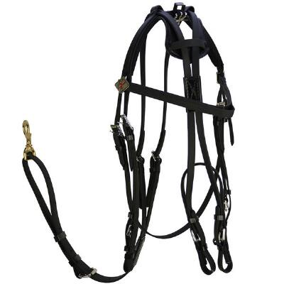 Xtreme Open Bridle Beta