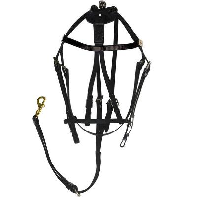 Xtreme Open Bridle Synthetic