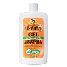 Absorbine Liniment Gel 12 oz - TB