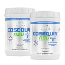 Cosequin ASU Plus 1050 gm 2 Pack - TB