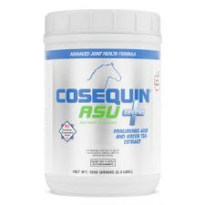 Cosequin ASU Plus 1050 gm - TB