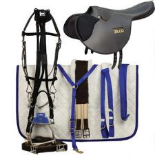 Monte Racing Under Saddle - TB