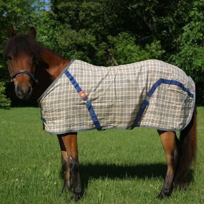 5/A Baker Sheet Miniature Horse Original Plaid