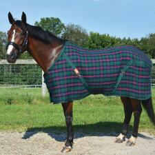 5/A Baker Tartan Plaid Stable Sheet - TB