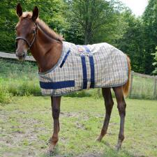 5/A Baker Foal Expand O Blanket - TB