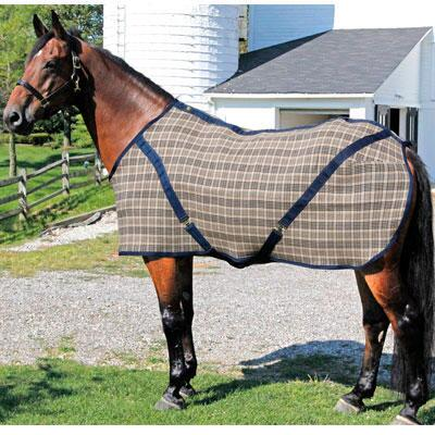 Jacks Buckeye Stable Blanket Closed Front