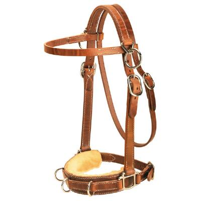 Heavy Duty Harness Leather Lunging Caveson