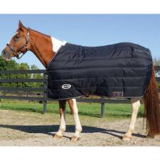 Antarctic Stable Blanket Mid Weight