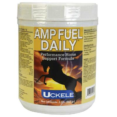 Amp Fuel Daily 2 lb