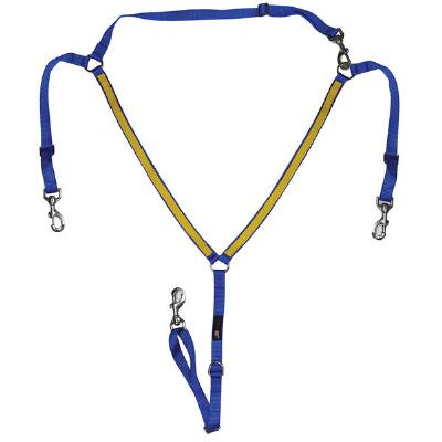 Walsh Buxton Martingale Two-Tone Narrow