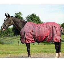 Country Pride Arctic Breeze Ballistic 1680D Midweight Turnout Blanket - TB