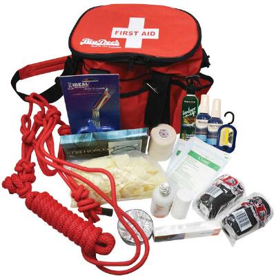 Emergency Travel First Aid Kit