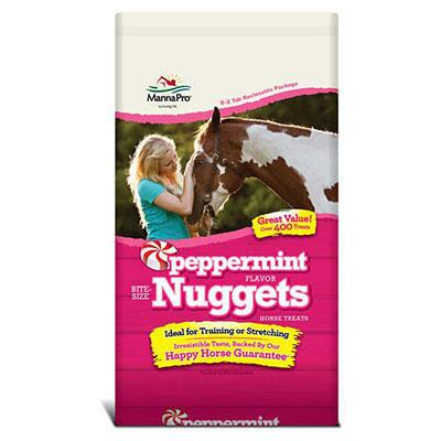 Peppermint Bite Size Nuggets Treat 1 Lb