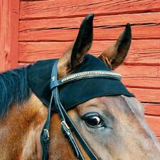 Back On Track Therapeutic Ceramic Equine Head Cap - TB