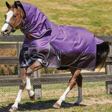 Weatherbeeta Comfitec Dynamic Detach-A-Neck Lite Turnout Sheet - TB