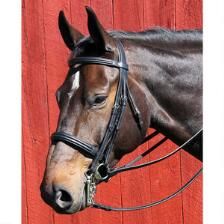 Vespucci Double Raised Weymouth Dressage Bridle - TB