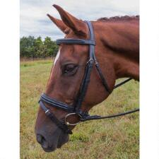 Vespucci Double Raised Dressage Snaffle Bridle - TB