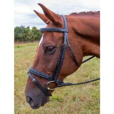 Vespucci Double Raised Snaffle Bridle - TB