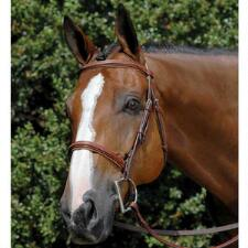 Vespucci Fancy Raised English Bridle Oakbark - TB