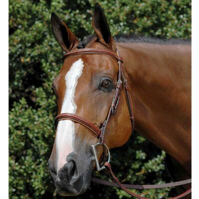 Fancy Raised English Bridle Oakbark