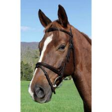 Vespucci Plain Raised English Bridle Brown - TB