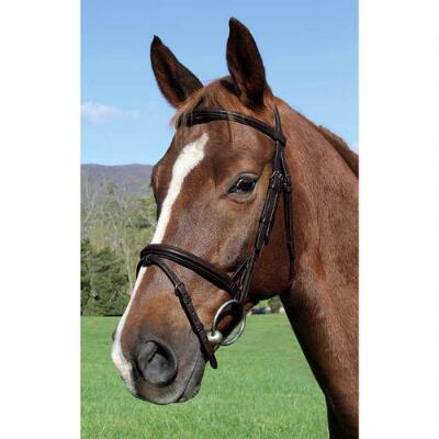 Vespucci Plain Raised English Bridle Brown