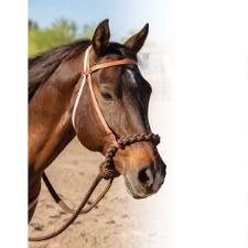 Professionals Choice Loping Hackamore - TB