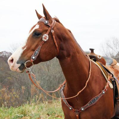 Big Country Tack Sierra Browband Headstall
