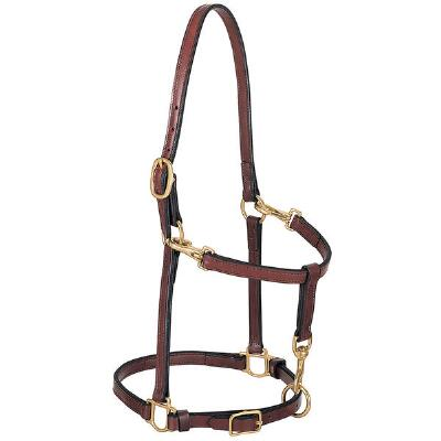 Convertible Leather Grooming Halter