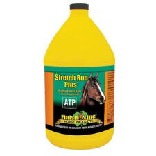 Stretch Run Plus Gallon - TB