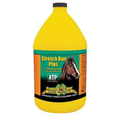 Stretch Run Plus Gallon