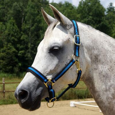 Country Pride Padded Two Tone Nylon Halter