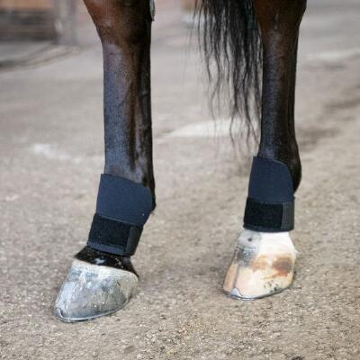 Thoroughbred Scalping Boots