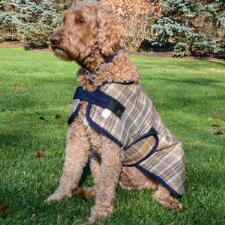 Country Pride Traditional Plaid Dog Blanket - TB