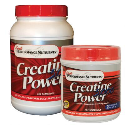 Creatine Power 5000  2 lb