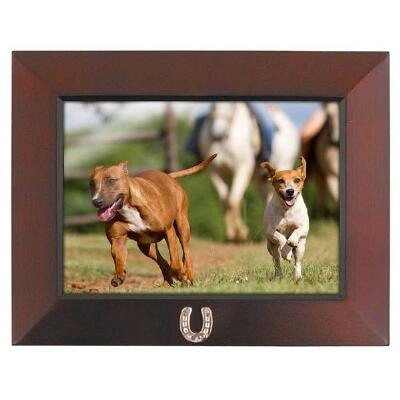 Lucky Horseshoe 5x7 Picture Frame