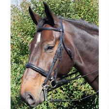 Vespucci Voyager Dressage Weymouth Bridle - TB