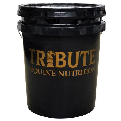 Tribute 369 Shine 5 Gallon Bucket