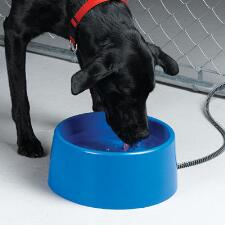 Heated Plastic Pet Bowl - TB