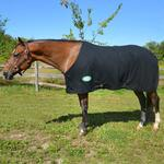 Polar Fleece Dress Sheet Lightweight - TB