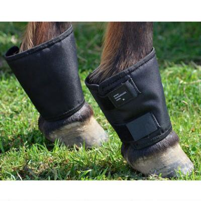 Click Horse Fetlock Shield Pair One Size