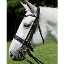 Wembley X-Line Jerez Weymouth Dressage Bridle - TB