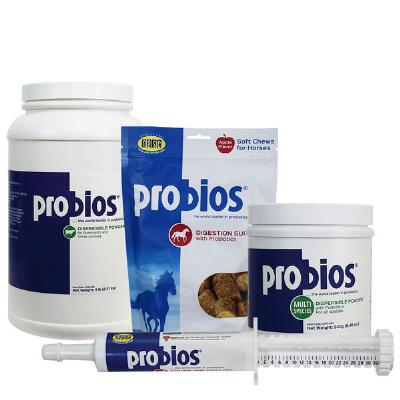 Probios Gel Syringe 30 gm