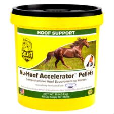 Select The Best Nu Hoof Accelerator 11 lb - TB